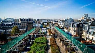 1009395_quand-les-legumes-repoussent-en-ville-web-tete-0203540498457