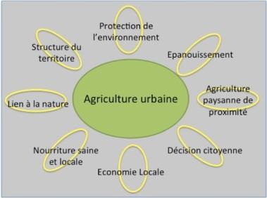 Schéma Concept Agriculture Urbine