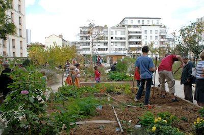 L agriculture urbaine partag e maison de l 39 agriculture for Piscine urbaine le jardin de catherine