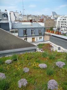 AgroParisTech, rue Saint-Bernard, Paris 5e (75), juin 2013